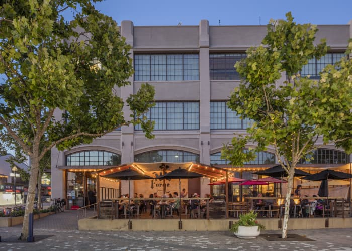 Oakland Bar