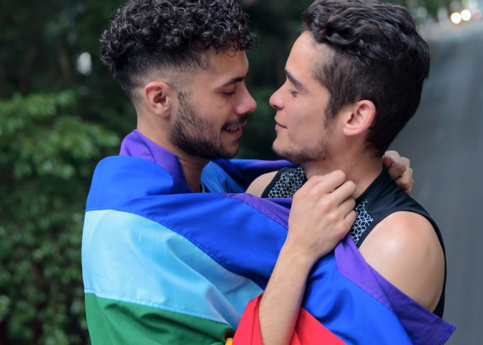 Homophobia and Contemporary Problems of Gays in Society