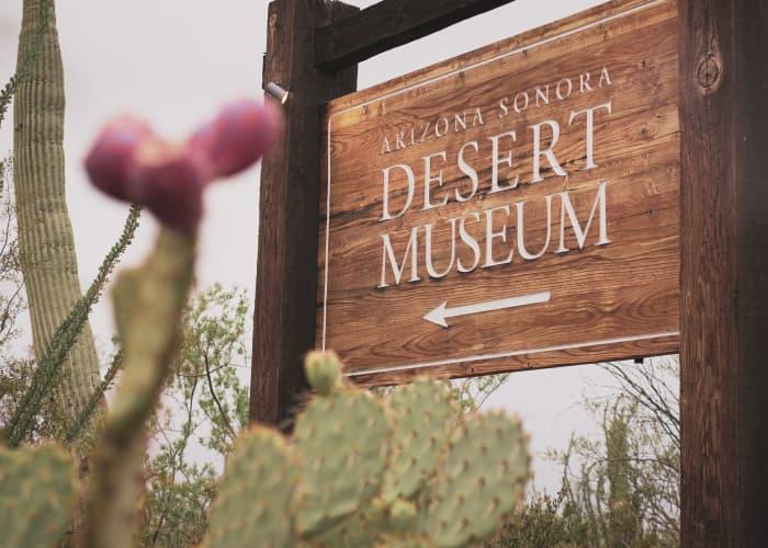 Tucson Place